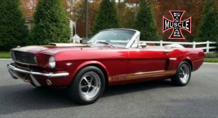 1966 Shelby GT 350 Convertible SOLD SOLD SOLD
